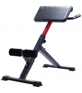 Fitness Rugtrainer Hyperextension
